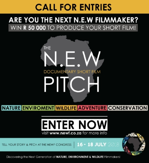 The N.E.W Pitch calls for film entries